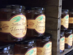Southern Forest Honey